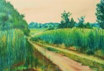 Feldweg in Dobien, Pastellkreide, 1998, 49x34
