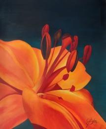 Rote Eintagslilie, Acryl, 2012, 50x60